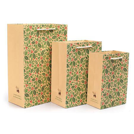 Craft paper garment bags 1
