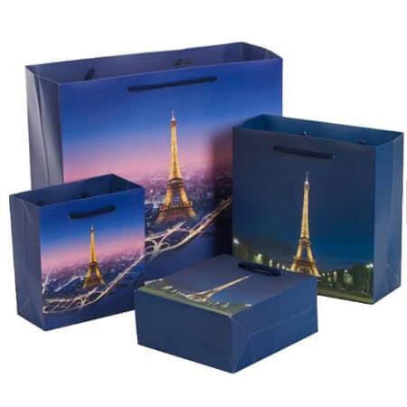 Custom Eiffel Tower garment bag 1