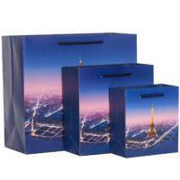 Custom Eiffel Tower garment bag 3