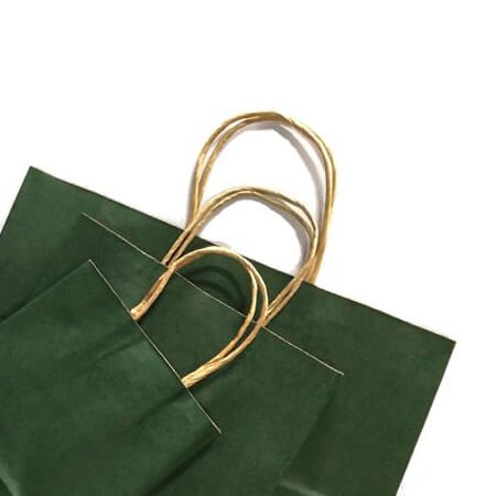 Kraft paper bag with twisted handles 4