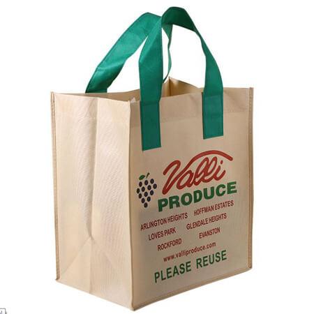 Reusable printed non woven bags 2
